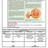 Planeación-Actividades Ciencias Física Secundaria trimestre 06
