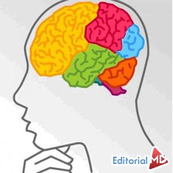 #12 Memoria o Lógica