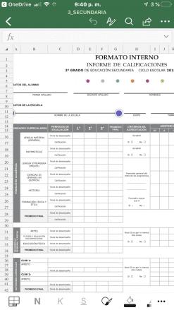 formato editable de reporte de evaluacion en excel