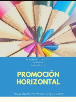 Curso Para Promoción Horizontal