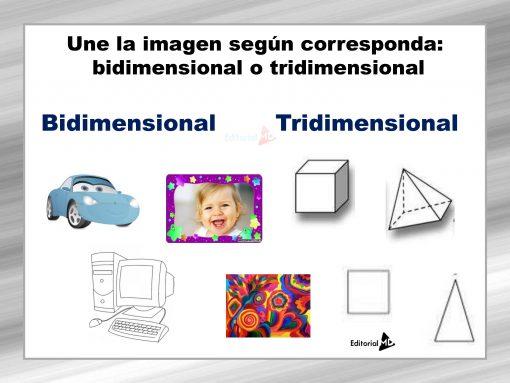 Actividades bidimensionales y tridimensionales