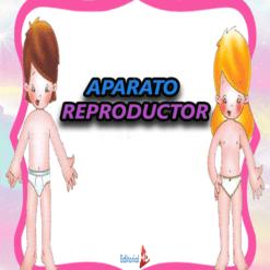 Aparato Reproductor para niños