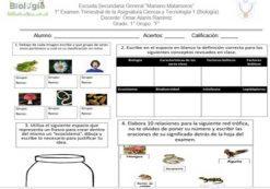 Examen Trimestral Ciencia Y Tecnología 1 (Biología)