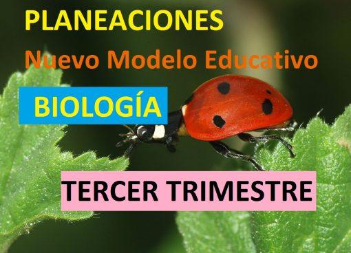 Planeaciones de biologia tercer trimestre