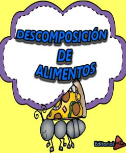 DESCOMPOSICIÓN DE ALIMENTOS