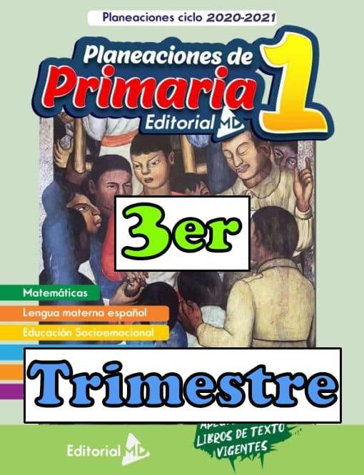 Ejemplo-Planeación-1-grado-de-Primaria-Trimestre-3 01