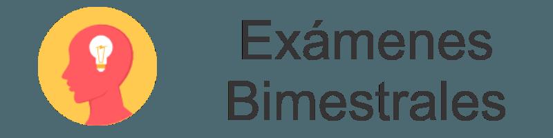 examenes trimestrales