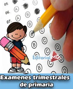 Exámenes trimestrales de primaria