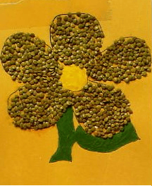 Flor de legumbres