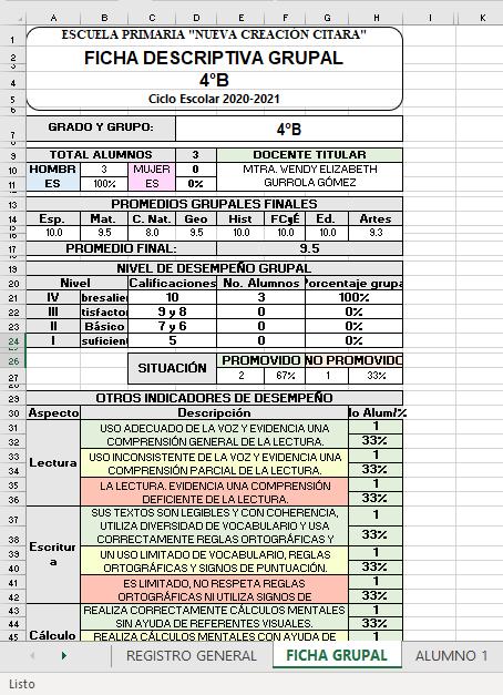 Generador De Fichas Descriptivas en Excel 02
