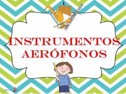 Instrumentos Aerófonos