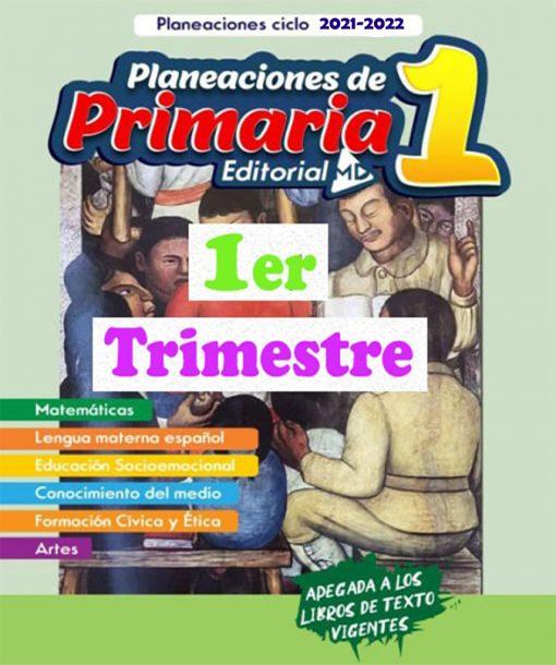 Planeaciones-primaria-21
