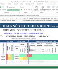 Diagnostico del Grupo en excel