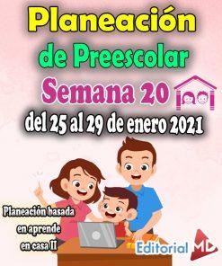 Semana 20 Planeación de Preescolar Aprende en casa 2