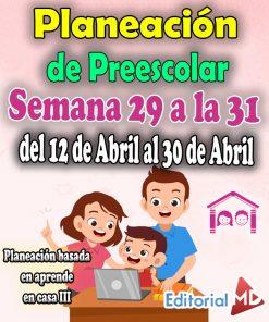 Semana 29 a la 31 Planeación de Preescolar Aprende en casa 3