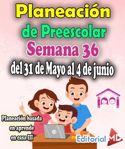 Semana 36 Planeación de Preescolar Aprende en casa 3