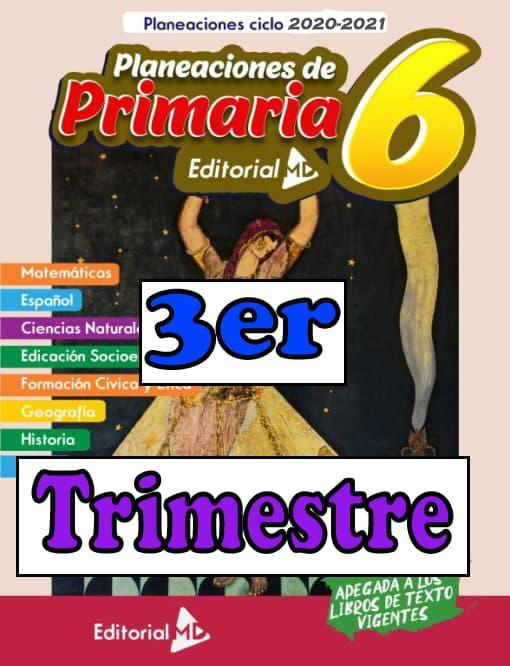 Planeacion primaria sexto grado tercer trimestre