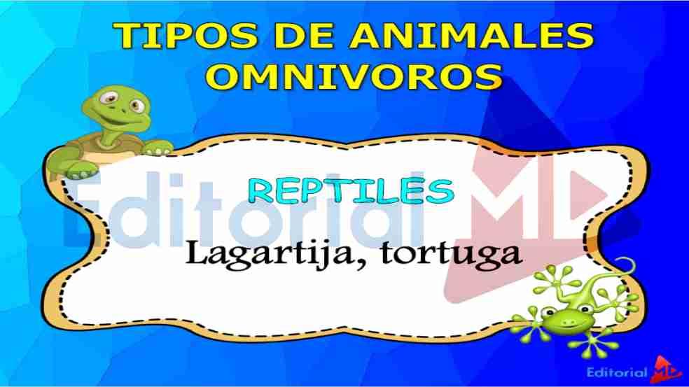 tipos-de-animales-omnivoros
