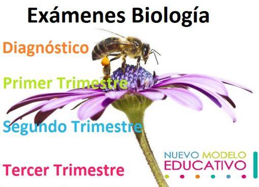 Exámenes Biología Secundaria