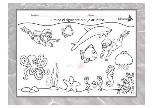 actividades animales acuaticos 02