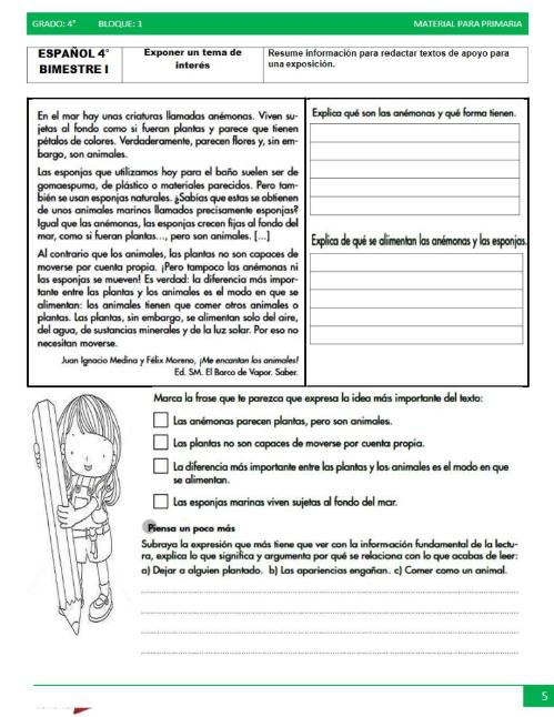 actividades de Cuarto grado de primaria3