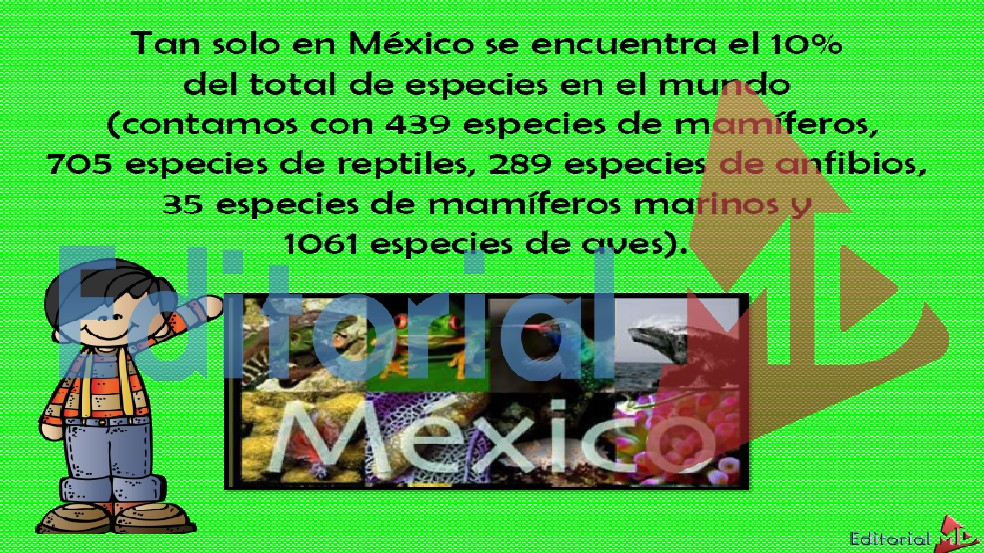 animales endemicos de mexico