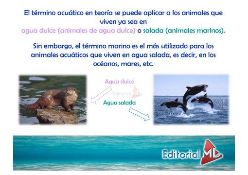 animales acuaticos 03