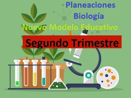 planeaciones Biología secundaria segundo trimestre