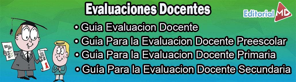 categoría evaluación docente