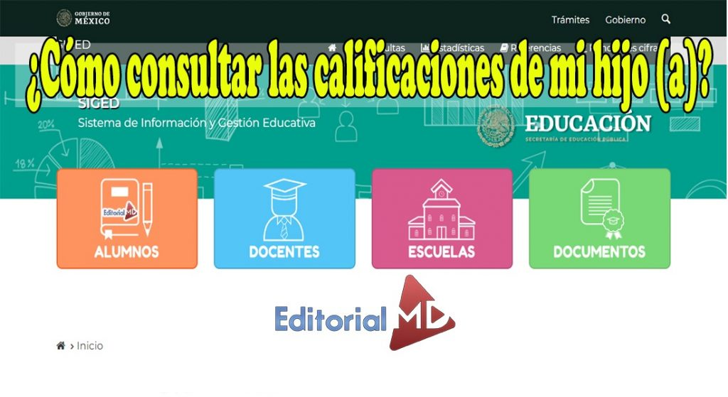 consulta de calificaciones SEP 2020