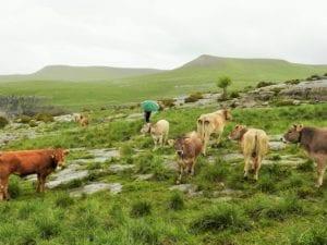 ejemplo de zona rural