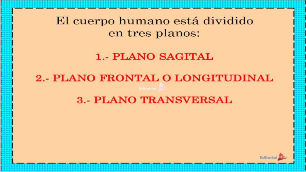 ejes de movimiento del cuerpo humano
