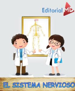 sistema nervioso para niños