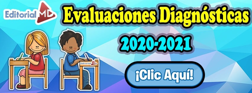 evaluaciones diagnosticas 2020-2021