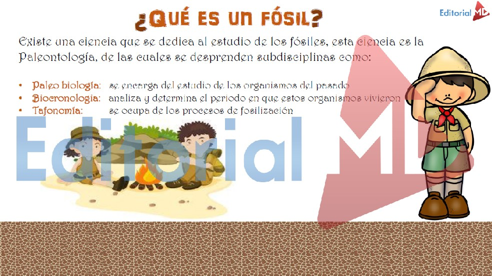 ¿Que es un Fosil?