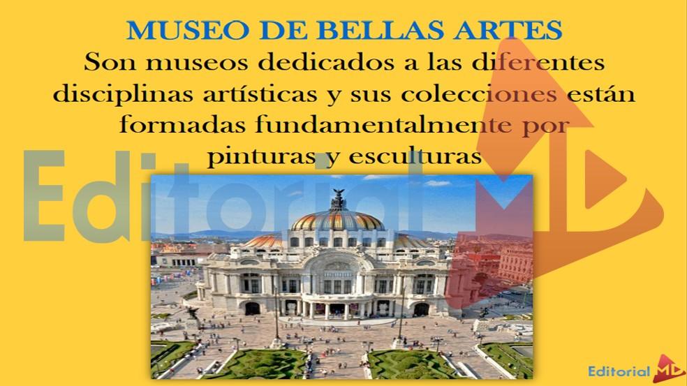 museo-de-bellas-artes-arquitecto