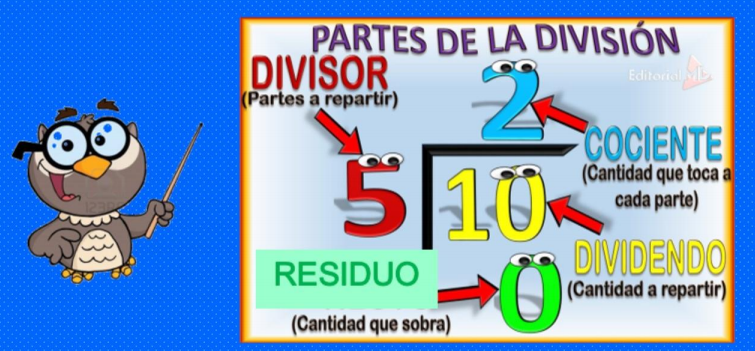 partes de la division para niños