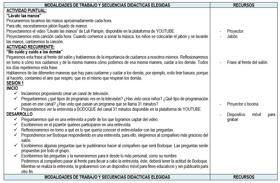 planeacion del curso remedial para nivel primaria
