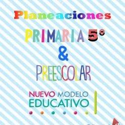 Planeación preescolar y primaria 5