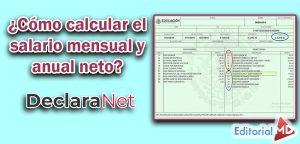 salario neto y anual Declaranet