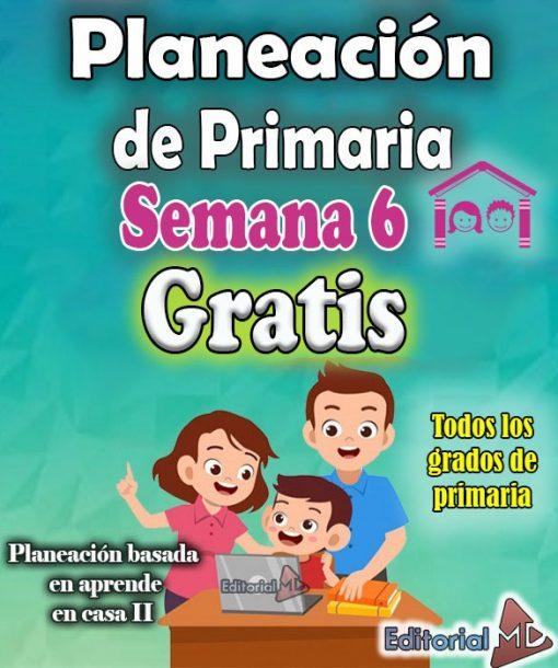 planeacion semana 6 primaria de aprende en casa 2