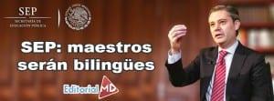 sep maestros bilingues
